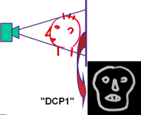 In case of DELPHI DCP1 boundary condition structure functions are projections of the heat-flow path 'rom the face'.